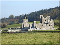 N5170 : Fore Abbey by Oliver Dixon