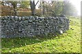 NY8986 : Dry stone wall by Russel Wills