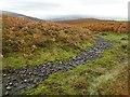 SO1525 : Stream on Mynydd Llangorse by Philip Halling