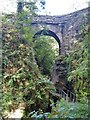 SX5084 : Lydford Gorge [55] by Michael Dibb