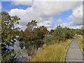 SN6862 : Boardwalk over Tregaron Bog in Ceredigion by Roger  Kidd