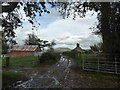 SO2690 : Scene at Upper Bank Farm with a view to Corndon Hill by Jeremy Bolwell