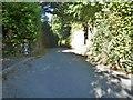 SX6987 : Mill Street by Michael Dibb