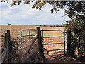 SP5313 : Gate on the Oxfordshire Way by Des Blenkinsopp
