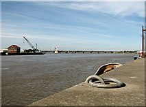 TG5107 : View north along the River Yare by Evelyn Simak