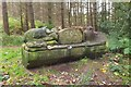 NH7346 : Carved bench, Cullernie Wood by Jim Barton