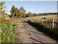 NH5255 : Old road, by Tallysow by Craig Wallace