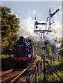 SZ5589 : Ivatt Class 2 2-6-2 tank locomotive arriving at Havenstreet by Andy Stephenson