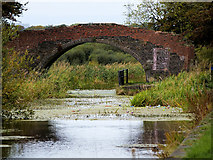 SD7908 : Rothwell's Bridge; Manchester, Bolton and Bury Canal by David Dixon