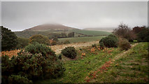 NZ5712 : When Roseberrye Toppinge weares a cappe … by Mick Garratt