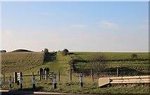 SU1242 : Walking to Stonehenge by David Howard
