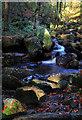 SK2579 : Burbage Brook by Andy Stephenson