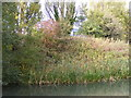 SO9396 : Tarmac View by Gordon Griffiths