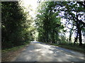 TG1622 : Holt Road, 12 miles from Holt on the B1149 by Adrian S Pye