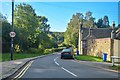SK3382 : Sheffield : Beauchief Abbey Lane by Lewis Clarke