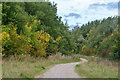 SK4661 : Ashfield : Silverhill Wood Country Park by Lewis Clarke