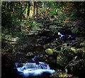 SK2579 : Waterfalls in Padley Gorge by Andy Stephenson