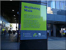 TQ2982 : Sign for the Wellbeing Walk by Stephen Craven