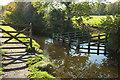 SX4772 : Drinking place, Tavistock Canal by Derek Harper