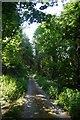 SO3077 : Road to Menutton by Richard Webb
