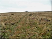 SX6767 : Buckfastleigh Moor [6] by Michael Dibb