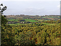 SO8282 : Woodland and fields south-west of Kinver in Staffordshire by Roger  Kidd