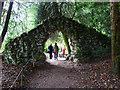 ST7734 : Stone arch, Stourhead by Brian Robert Marshall