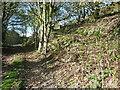 SE0827 : Nab End Lane near Nab End, Halifax by Humphrey Bolton