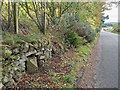 NH6151 : Milestone on the Tore Kessock Ferry Road by valenta