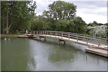 SP4907 : Footbridge, Fiddler's Island by N Chadwick