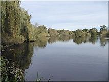 TQ0481 : Little Britain Lake by Marathon
