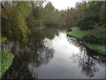 TQ0481 : River Colne near Packet Boat Lane by Marathon