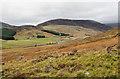 NO1966 : Hill slope below Cuingard by Trevor Littlewood