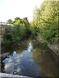 SP0982 : River Cole, looking north, in Springfield by Richard Law