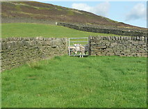 SE0028 : Gate on Wadsworth FP57, Moor Side by Humphrey Bolton