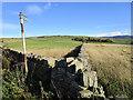 SK0089 : Footpath to Ringstones Farm by Stephen Burton