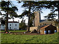 ST5570 : A flock next to the church by Neil Owen