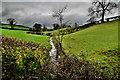 H4570 : Burn, Beagh / Lissan by Kenneth  Allen