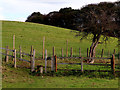 SO8681 : Pastures and stile east of Caunsall in Worcestershire by Roger  Kidd