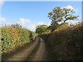 TG1639 : Mill Lane by Hugh Venables