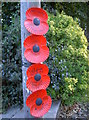 ST5470 : Poppies at the top of Yanley Lane by Neil Owen