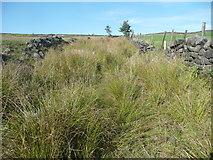 SE0028 : Keelam Lane, Wadsworth by Humphrey Bolton
