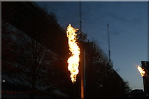 TQ1985 : View of a fire torch in the Fire Garden of the Light Up the Night event #5 by Robert Lamb