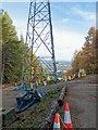 NH6243 : Power Line Renewal by valenta