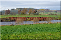 NJ0225 : River Spey by Anne Burgess
