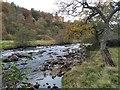 NO3764 : River South Esk by jamesnicoll