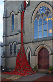 NT4728 : A poppy display at Selkirk Parish Church by Walter Baxter