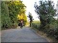 TQ2239 : Lane to Waggoners Farm by Gerald England