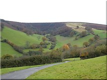 SS8834 : The Punchbowl and Withycombe by David Smith