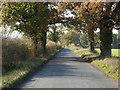 TG1301 : Ketteringham Road near Browick Bottom Farm by Adrian S Pye